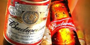 Budweiser-IMG2010