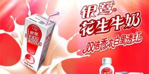YINLU_Nestle