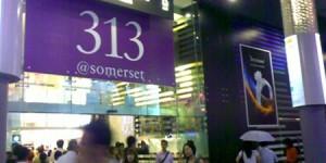 313@somerset_SG