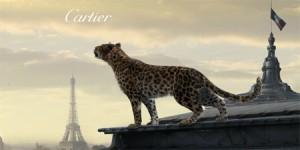 L'Odyssée-De-Cartier_Cover