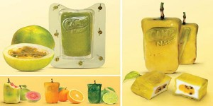 campnectar-the-real-fruit-boxes