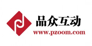 Pzoom-Logo