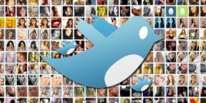Twitter-Fans