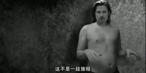 Brad-Pitt-Cos