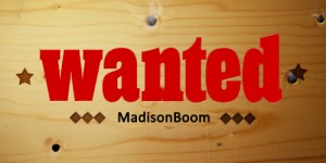 MADISONBOOM-JOBSEEK