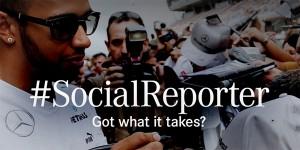 social report head