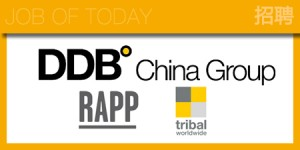 DDB-CHINA-GROUP-HRLOGO-2013