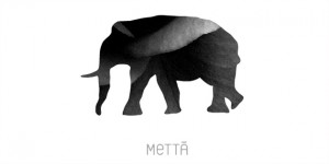 METTA-COMMNICATIONS-HK-IMG