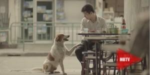 Thai-Life-Insurance-630X315
