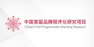 AdChina programmatic Branding Rearch