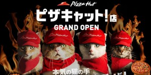 Pizza Hut-Pizza Cat-cover