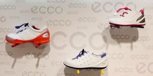 ECCO2014IMG2