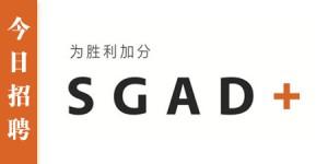 SGGDPlus-HRLOGO2015