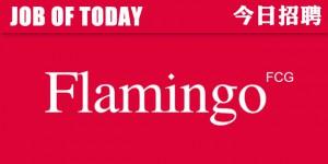 Flamingo-2015HRLOGOCV