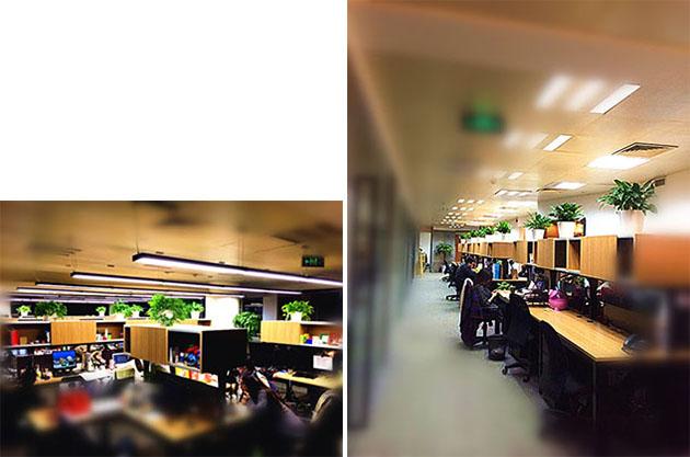 zenith-office-1