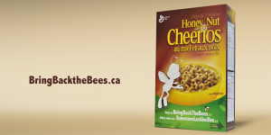 Honey Nut Cheerios-0317-1