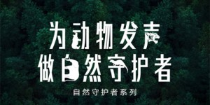 Nestle-Zhu Ya Wen-cover-0419