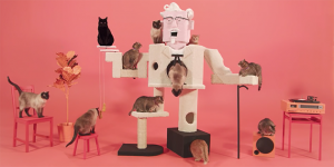 kfc-colonel-cat-cover