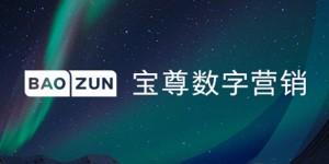 baozun-cover