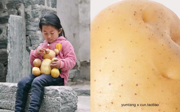 taobao-gongyi11-0822