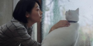 Google Home Mini Loves Cats 篇[00-01-37][20181229-161249434]