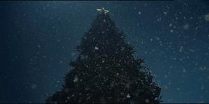 havas-christmas-toutu