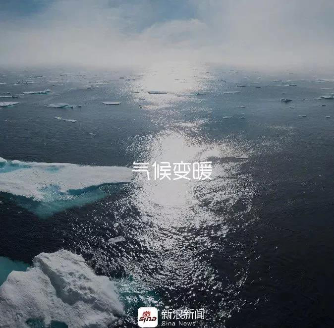 sina-earth day2019-2