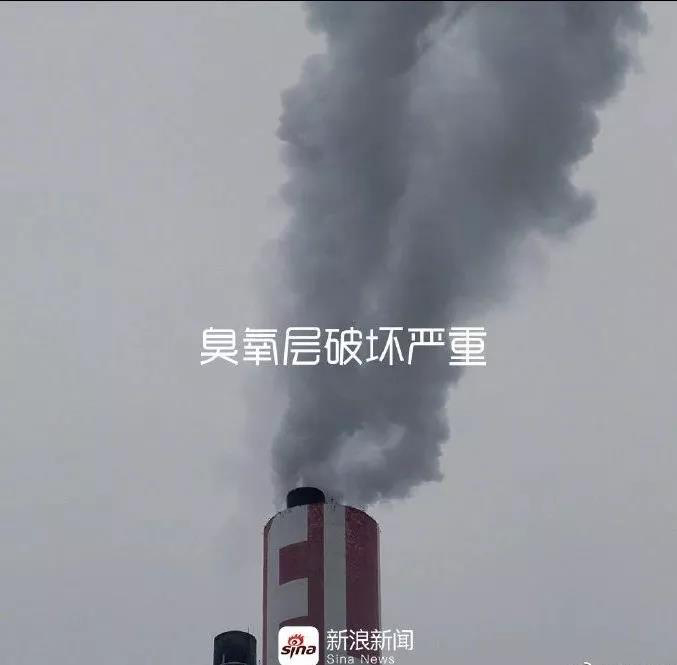 sina-earth day2019-8