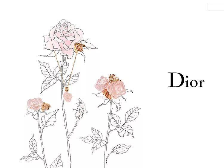 徐磊-Dior
