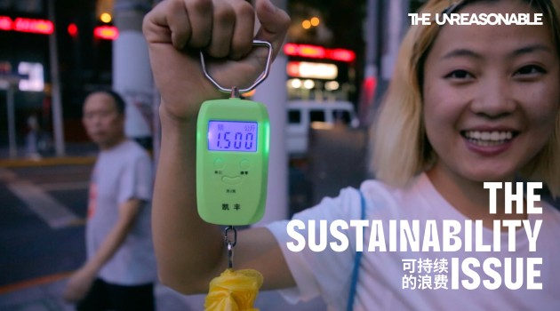 the-sustainable-issue2