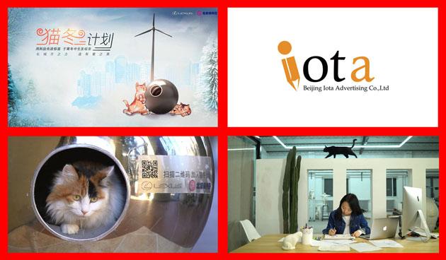 iota-1217
